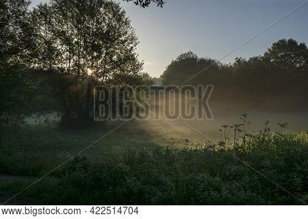 Foggy Morning, Sun Light Shines Through Fog And Trees, Illuminated Morning Meadow, Beautiful And Tra