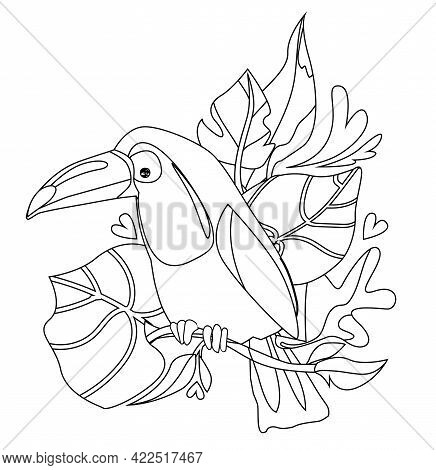 Coloring Toucan With Tropical Leaves Print Design Tropics Vector Illustration, Silhouette Coloring T