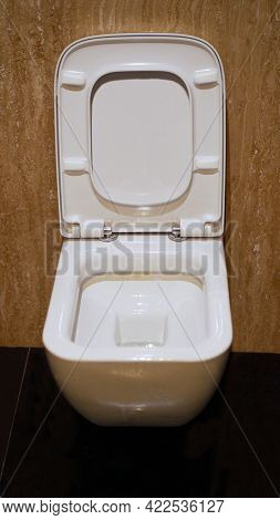 White Toilet Bowl And Toilet Paper In A Bathroom. Wc In The Toilet
