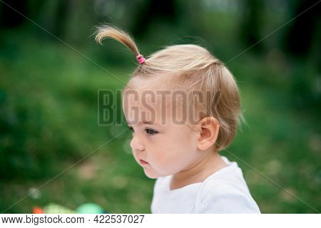 Little Girl With A Ponytail On A Green Meadow. Portrait. Side View