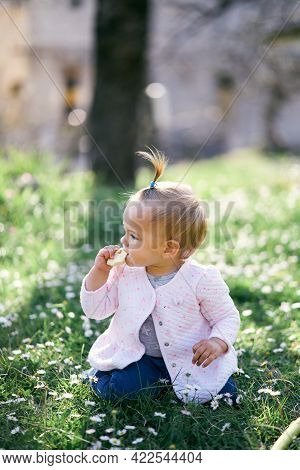 Little Girl With A Ponytail On Her Head Gnaws A Fruit Chip, Sitting On Her Knees On A Green Lawn Amo