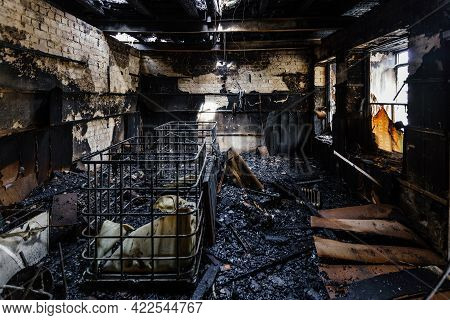 Burnt Out Shop After Fire With Charred Walls And Remains Of Furniture
