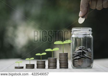 Hand Putting Coin To Saving Money Jar And Growth Coins Stacking With Plant , Money Saving And Divide