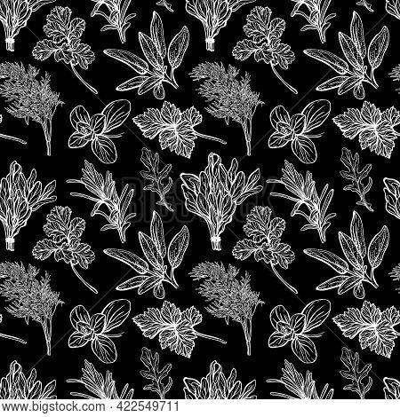Seasonings And Herbs Pattern. Aromatic , Herbs. Basil, Oregano, Parsley