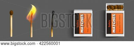 Safety Matches In Box, Stages Of Burning From Fire To Charred Burnt Wooden Stick, Matchsticks With B