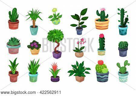 House Plants Growing In Ceramic Flowerpots Vector Set