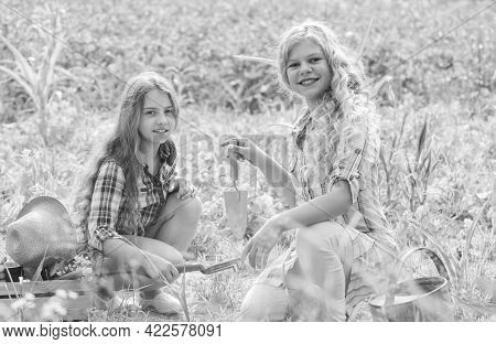 Planting And Watering. Planting Vegetables. Sisters Together Helping At Farm. Girls Planting Plants.