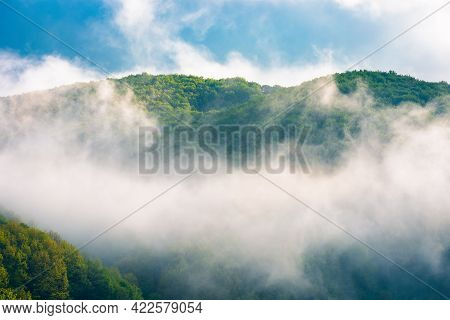 Mountain Landscape On A Misty Morning. Beautiful Nature Background In Summer. Scenic Outdoor Scenery