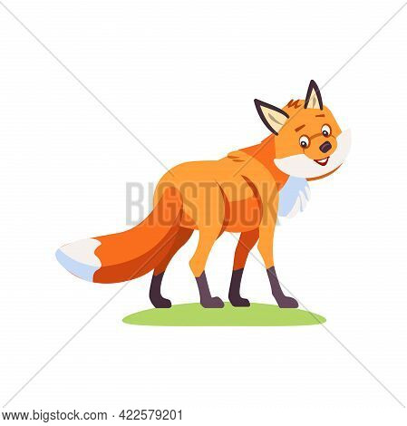 Fox Cartoon. Cute Fox Turns To The Viewer And Looks Friendly. Vector Illustration Isolated On White