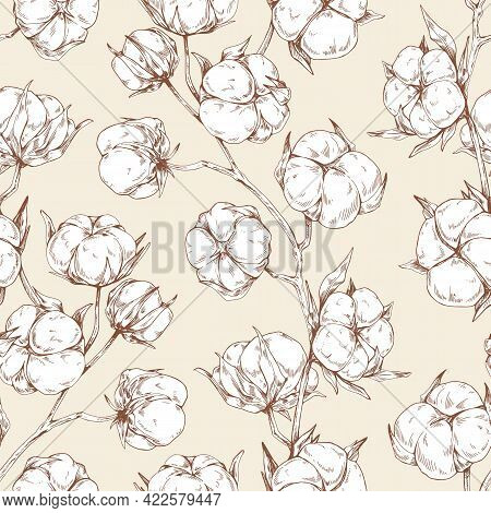 Seamless Repeatable Botanical Pattern With Soft Fluffy Cotton Flower Branches. Vintage Design Of End