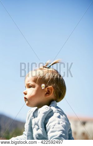 Little Girl With Two Ponytails And A Chamomile Behind Her Ear Against A Blue Sky. Portrait. Close-up