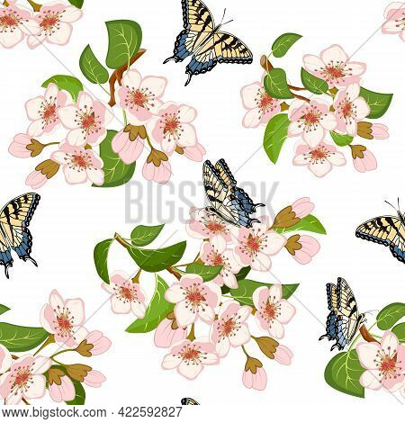 Blooming Cherry And Butterflies In A Pattern.vector Pattern With Blooming Cherry And Butterflies On