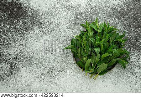 Fresh Green Sprigs Of Mint
