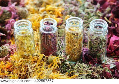 Glass Bottles Of Medicinal Herbs - Helichrysum, Rose Petals, Calendula, Wild Marjoram. Dry Plants, H