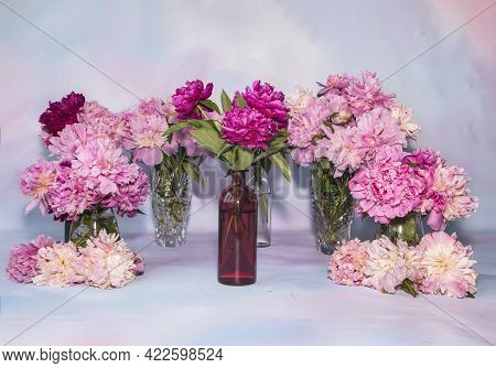 Many Delicate Multi-colored Peonies In Various Vases On The Table. Luxurious Peonies In Glass Vases.