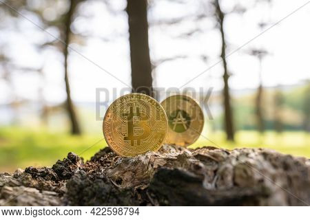 Close-up of Bitcoin and Cardano on a tree stump outdoor with green natural blurred forest background with copy space. Gold BTC and ADA cryptocurrency coins, ecological impact, energy consumption
