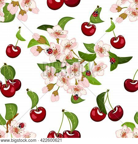 Blooming Cherry And Berries In A Pattern.colored Vector Pattern With Flowers And Cherries On A White