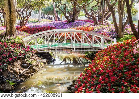 Beautiful Many Flowers In Garden And Small Canel In Public Park.