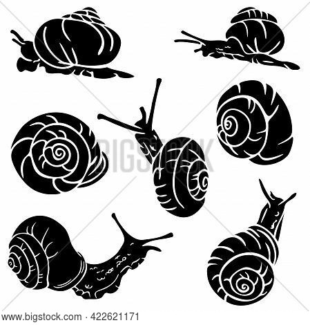 Vector Illustration With Silhouettes Of Snails In Various Postures. Collection Of Silhouettes Of Cra