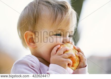 Little Girl Nibbles An Apple While Holding It With Her Hands. Close-up. Portrait