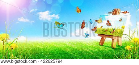 Flying Butterfly In Spring Morning. Panoramic View.