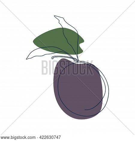 Drawn By A Solid Line Plum With Leaves On A Background Of Purple And Green Spots On A White Backgrou