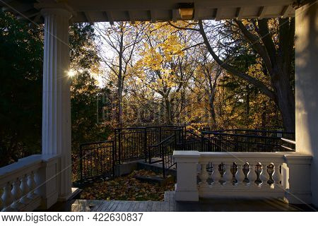 View Of The Back Yard From The Covered Porch