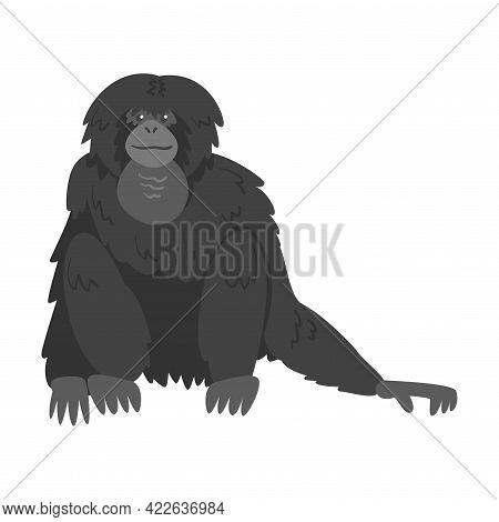 Siamang Monkey As Arboreal, Black-furred Gibbon Vector Illustration