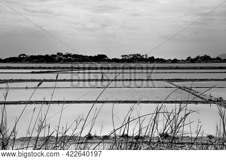 2021 05 29 Marsala Work In The Salt Flats