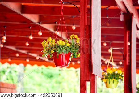 Hanging Flowerpot With Blooming Flowers In A Red Wooden Gazebo With Bulbs Decorated Terrace Of A Str