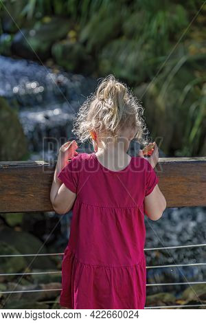 Mackay, Queensland, Australia - June 2021: A Young Female Child In A Red Dress Looks Over The Fence