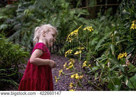 Mackay, Queensland, Australia - June 2021: A Young Girl Exploring Daisies In The Local Botanic Garde