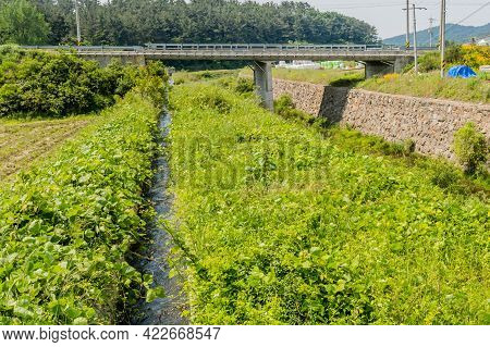 Water Flowing In Irrigation Aqueduct Through Verdant Foliage With Bridge In Background.