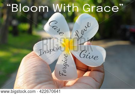 Bloom With Grace. Inspirational Motivational Quote With Positive Words On Petals Of White Bali Frang