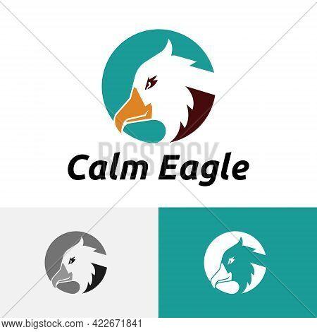 Calm Smiling Eagle Falcon Hawk Head Circle Logo