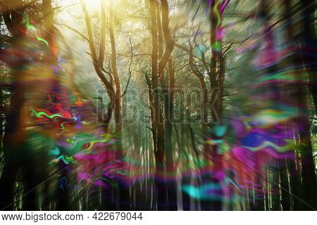 View Of Forest And Flashing Lights Effect. Migraine Aura, Symptom Of Disease