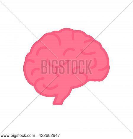 Human Brain Icon In Flat Style. Pink Brain In Cartoon Style. Symbol Of Memory, Wisdom, Mind, Idea An
