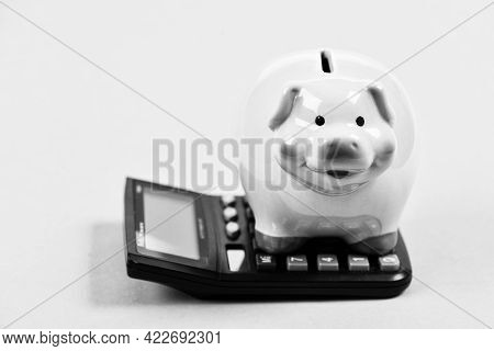 Investments Concept. Piggy Bank Pig And Calculator. Taxes And Charges May Vary. Helping Make Smart F
