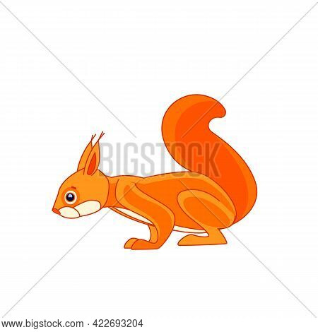 Squirrel Watches Curiously From Above. Cartoon Character Of An Rodent Mammal Animal. A Wild Forest C