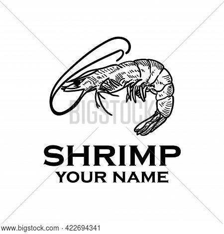 Shrimp Design Logo Vector. Shrimp Illustration Animal Vector.