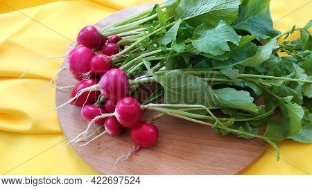 Harvest Of Radish Close-up. Ripe Juicy Radish Roots Lie On A Round Cutting Board. Early Vegetables A