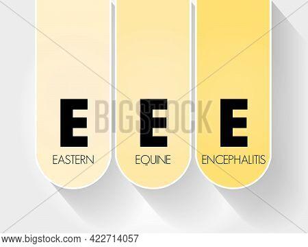 Eee - Eastern Equine Encephalitis Acronym, Medical Concept Background