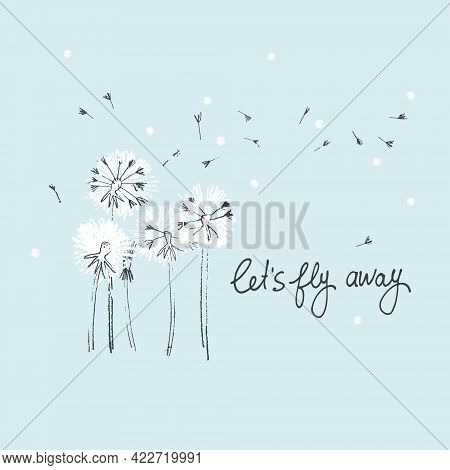 Lets Fly Away Vector Card. Hand Drawn Illustration Of Fluffy Dandelions With Seeds Blowing In The Wi