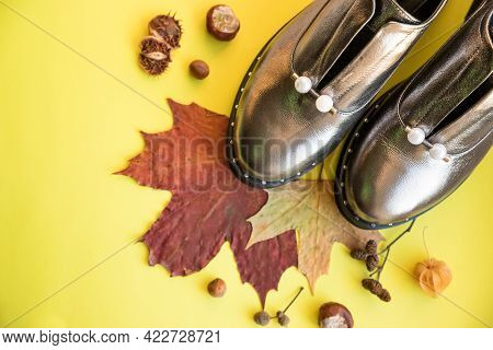 Pair Of New Woman Shoes And Boots Stay On Pastel Background With Falling Autumn Leaves, Autumn Shoes