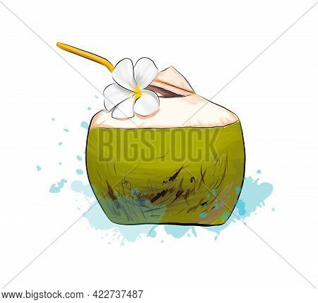 Fresh Coconut Tropical Cocktail With Straws From Splash Of Watercolors, Colored Drawing, Realistic.