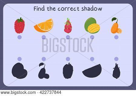 Matching Children Educational Game With Food - Raspberry, Orange Slice, Dragon Fruit, Mango, Kumquat