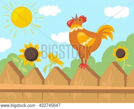 Rooster Welcoming Sun Cartoon Illustration. Cock Sitting On Fence Singing At Sunrise, Looking At Sun
