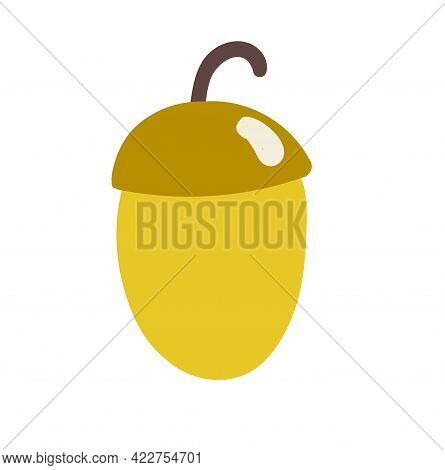 Hand-drawn Brown Acorn Isolated On White. Doodle Vector Illustration