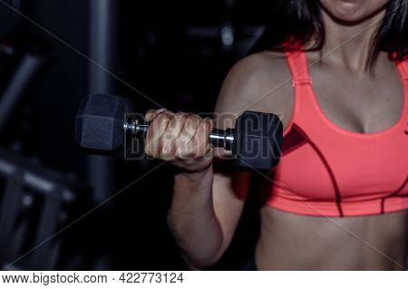 Fitness Sporty Woman In Training Pumping Up Muscles With Dumbbells. Young Sports Sexy Fitness Woman