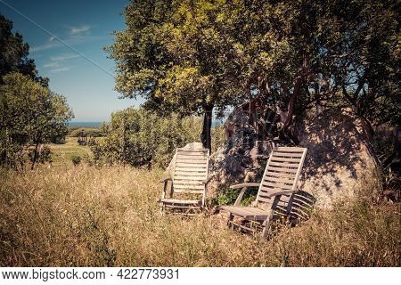 Two Wooden Garden Chairs Sitting Under Some Trees By A Rock In A Meadow Overlooking A Vineyard And M